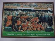 Картина на холсте ФК Шахтер