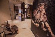 Декоративная роспись штукатурка Лев в Интерьере ДОНЕЦК