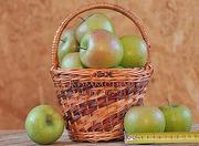 Красивые вкусные яблоки собственного производства