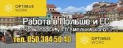 Помощь в переезде всей семьи в Польшу для украинских специалистов (ПМЖ